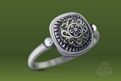Strieborný prsteň – Minca